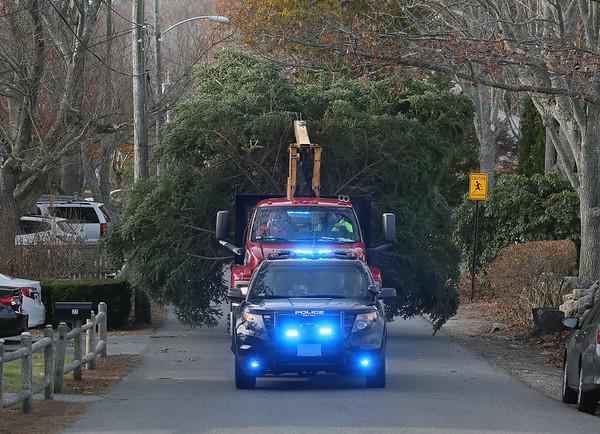 Rockport Christmas Tree