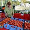 RYAN HUTTON/ Staff photo<br /> Ida Espinola, of Gloucester, browses the berries and tomatoes at Farmer Dave's stand at the Cape Ann Farmer's Market at Stage Fort Park in Gloucester on Thursday.