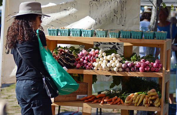 RYAN HUTTON/ Staff photo<br /> Barbara Drake, of Gloucester, browses a wall of vegetables at the Ron Ox Farm stand at the Cape Ann Farmer's Market at Stage Fort Park in Gloucester on Thursday.
