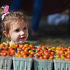 RYAN HUTTON/ Staff photo<br /> Mackenzie Lee, 3, of Hamilton, checks out some tomatoes at the Cape Ann Farmer's Market at Stage Fort Park in Gloucester on Thursday.