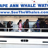 Whale Watch Business