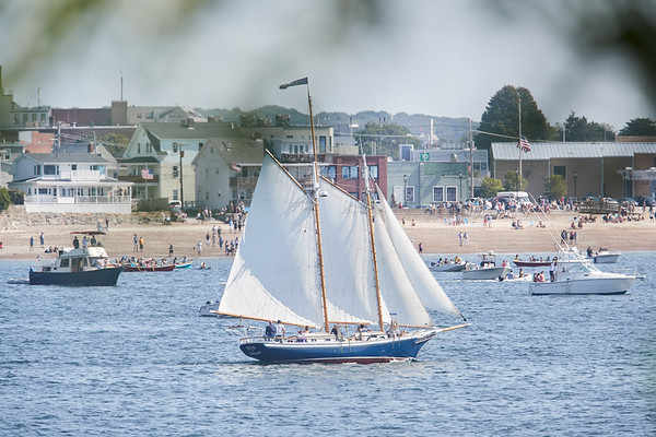 The Istar in the parade of Schooner ships in Gloucester, Sunday, September 2, 2018. Jared Charney / Photo
