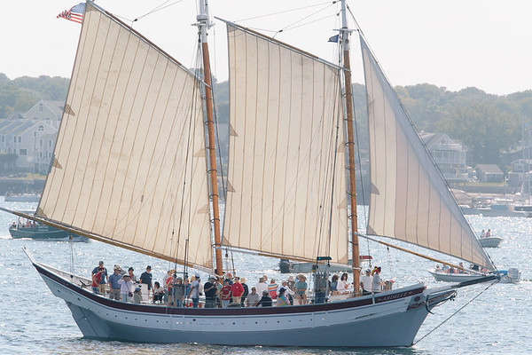 The Ardelle in the parade of Schooner ships in Gloucester, Sunday, September 2, 2018. Jared Charney / Photo