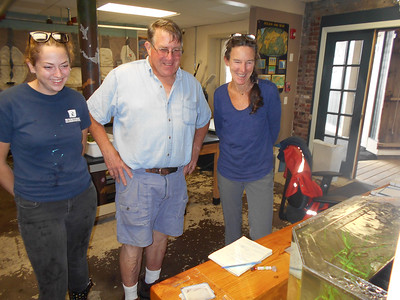 SEAN HORGAN/Staff photo/Maritime Gloucester aquarium volunteer Kelsey Bradford, left, lobsterman Tony Gross and Maritime Gloucester Director of Education Programs Amanda Madeira check out the trio of seahorses Gross gave  the marine education facility on Harbor Loop.