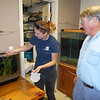 SEAN HORGAN/Staff photo/Maritime Gloucester aquarium volunteer Kelsey Bradford places the seahorse into the tank it will share with two other seahorses found and donated by lobsterman Tony Gross, right.