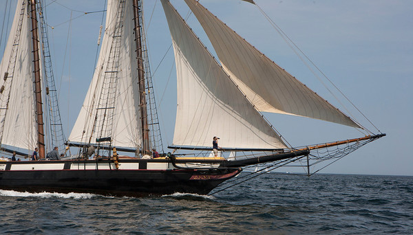 AMY SWEENEY/Staff photo.<br /> The Tall Ship Lynx, out of Nantucket, races in the 33rd annual Schooner Festival.<br /> Sept. 4, 2017