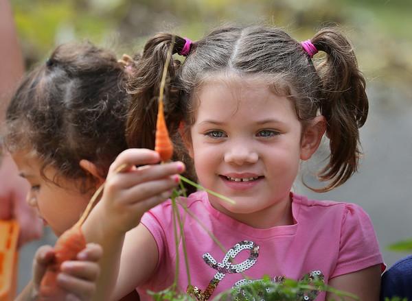Harvest Day at Veterans School