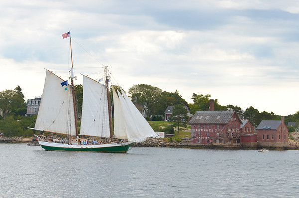 Gloucester:  The Schooner Liberty Clipper heads out for the Parade of Sails in Gloucester Harbor Sunday morning.  Desi Smith/Gloucester Daily Times. September 2, 2012