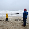 MIKE SPRINGER/Gloucester Daily Times<br /> Jeff Morton of Manchester and his six-year-old son Deuce look at the rising surf from Hurrican Sandy just before high tide late Monday morning on Singing Beach in Manchester. The large log in the background had just washed ashore.