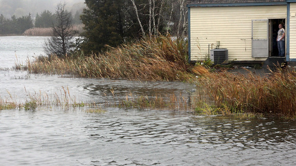 Allegra Boverman/Gloucester Daily Times. Vincent Marano, owner of Essex Wine & Spirits, looks out of the back door of his store to the swollen marsh along Main Street on Monday morning.