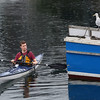 Warren VanDeventer of Rockport has a quiet encounter with a mutually inquisitive seagull while paddling his kayak through the lobster boat harbor Tuesday, Oct. 2, 2012 in Rockport.