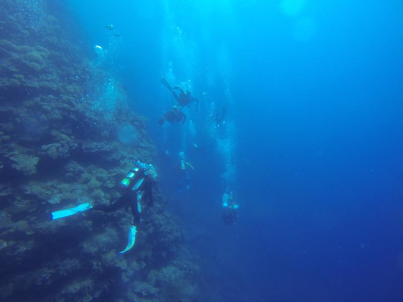 Dive 8 潛點:Virgin Blue Hole
