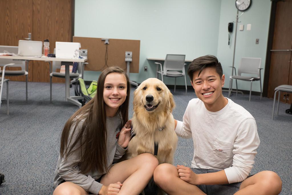 . Caroline Shabet, a sophomore at Troy High ,  and Jahow Yu,  also a sophomore at Troy, High (Photo by Dean Potter / For Digital First Media)