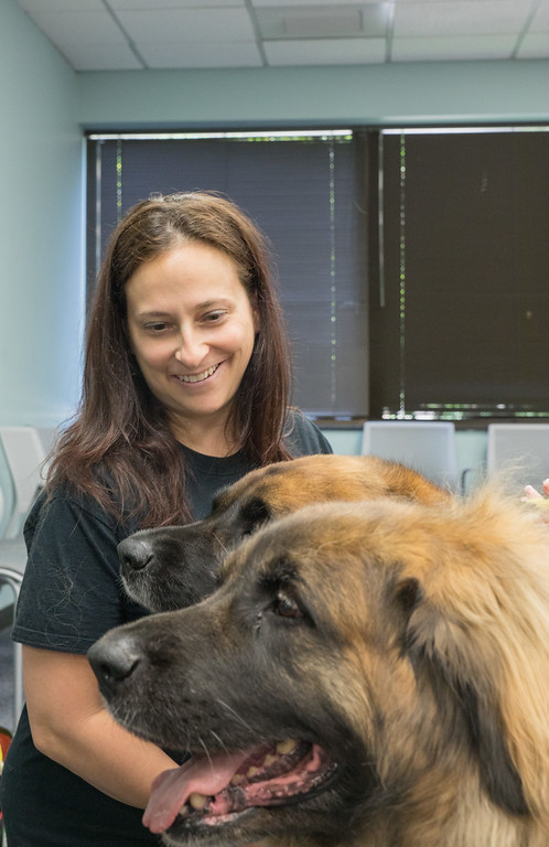 . Amy Garabedian and her dogs Willow and River (Photo by Dean Potter / For Digital First Media)