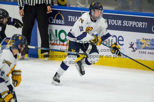 Hockey vs Niagara 1/24/17