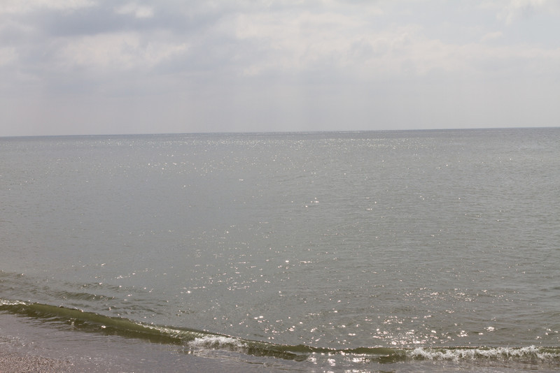 bovbjerg_2013-05-19_0083