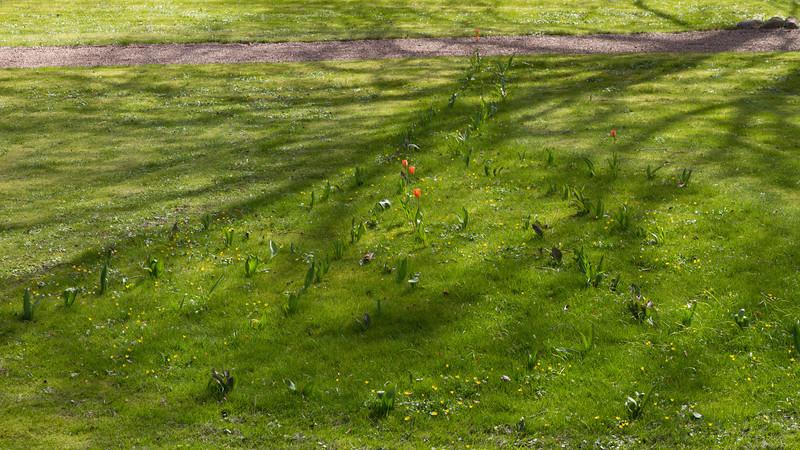 sevel_2014-04-18_0026