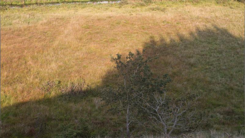 Ådalsstien/Flyndersø. Sept 25 @ 16:29