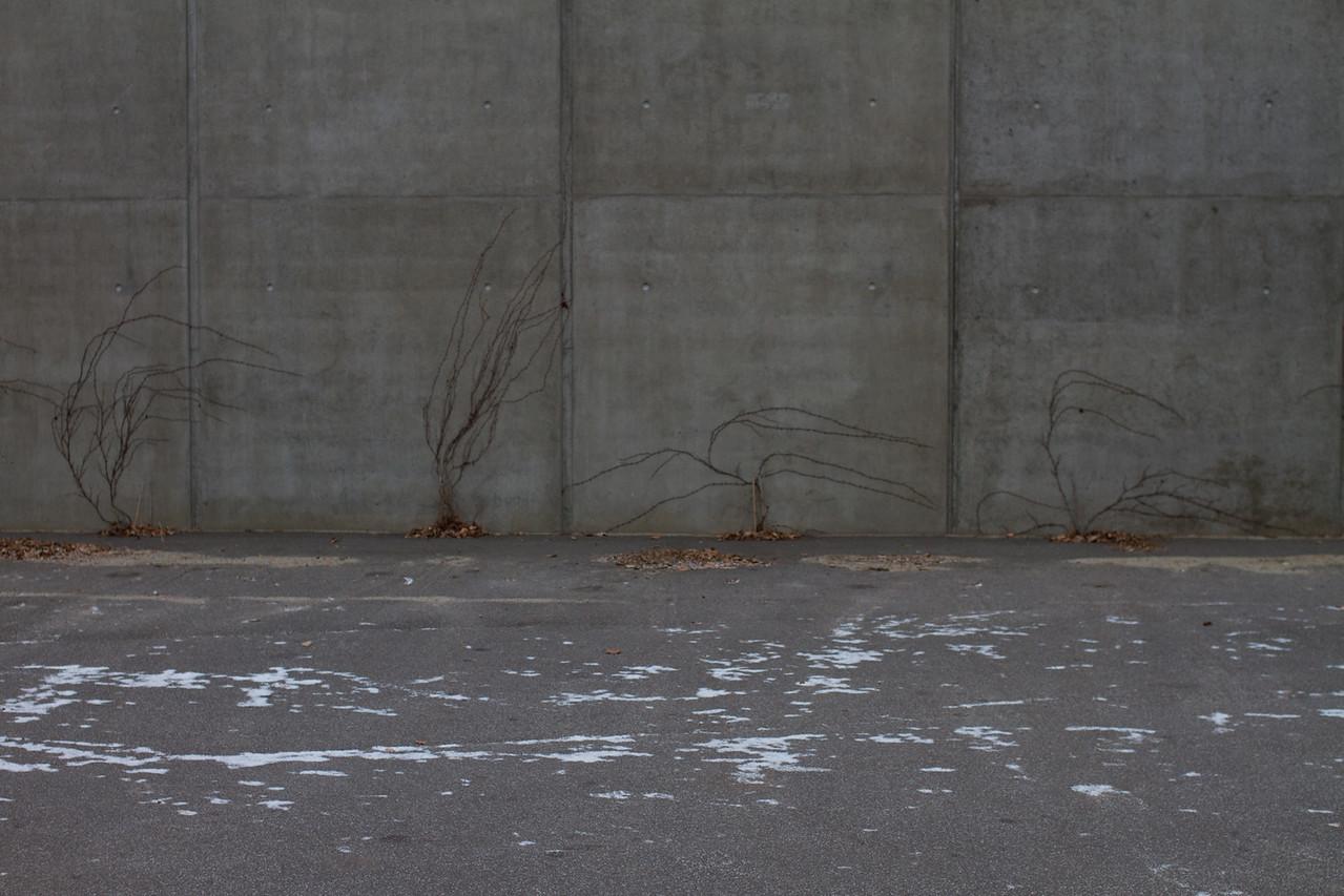 viborg_2013-01-12_0063