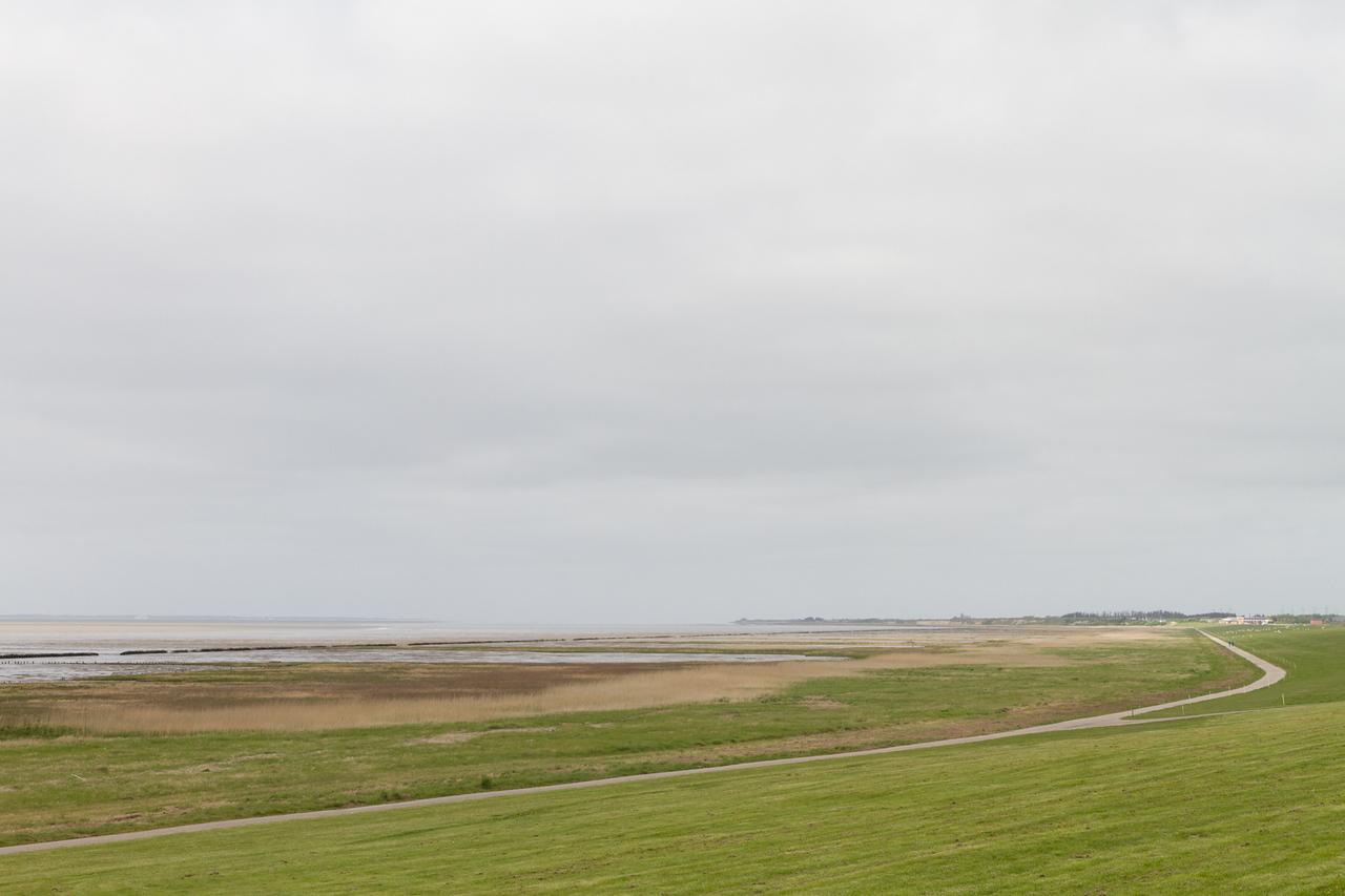 höjer_2015-05-14_160216