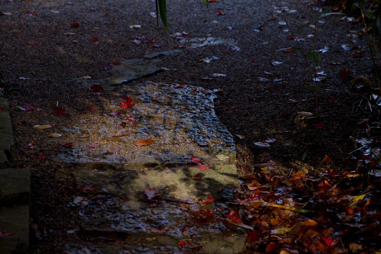 Sofiero Castle Gardens (Helsingborg). Oct 26.