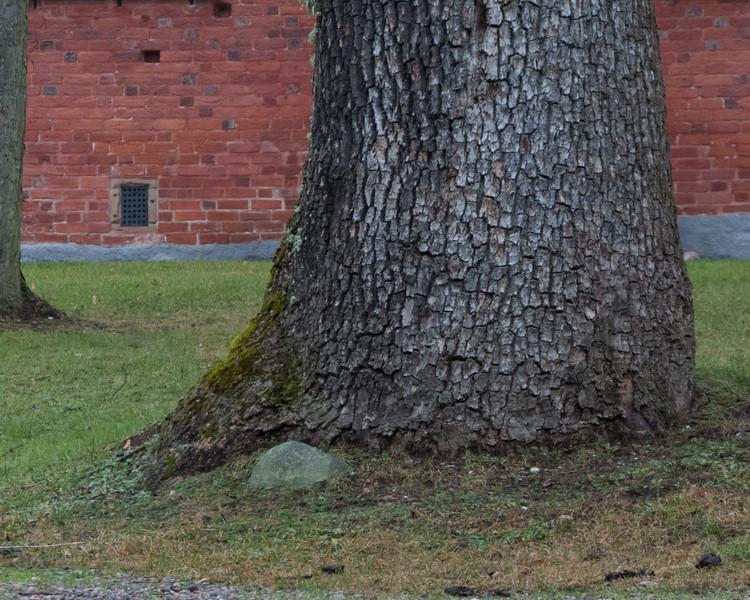Strängnäs domkyrka (cathedral). 2008 Nov 30 @ 13:04