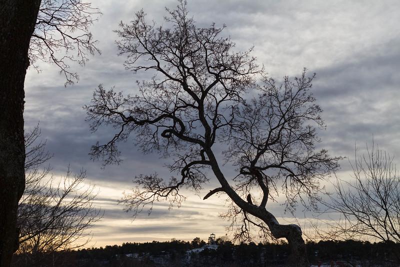 strängnäs_2018-12-25_105335