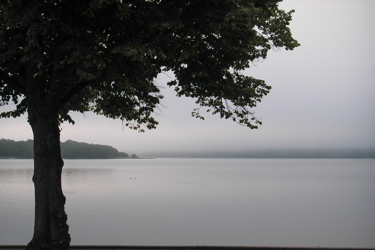 Ulvhällsfjärden (Ulvhäll bay), part of Lake Mälaren. Looking east. 2005 July 18 @ 05:50