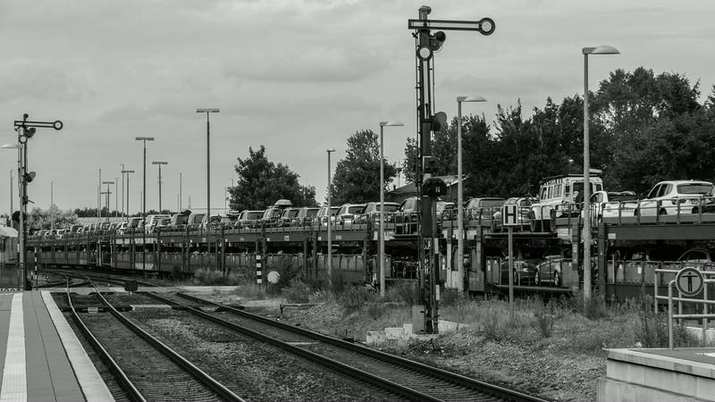 niebull_2014-08-10_0049