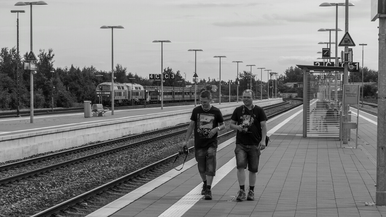 niebull_2014-08-10_0055