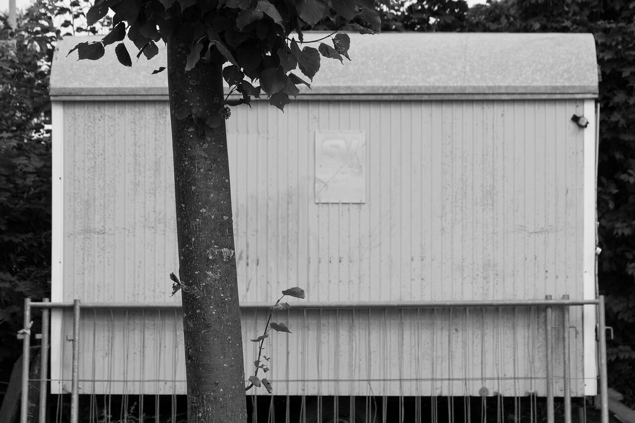 niebull_2014-08-10_0033