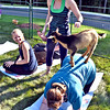Giving Yoga instruction is Olivia Evans of Chelmsford during a session of Goat Yoga at Rollstone Bank in Groton, doing yoga is on left Chelsea Hudson of Lunenburg, and Cheryl Prentiss of Leominster with  the goat Copperpenny on her back. SUN/ David H. Brow