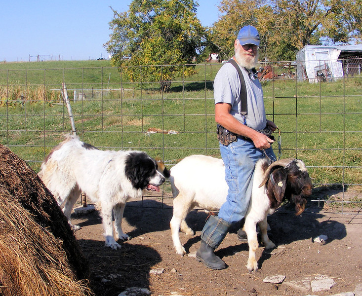 Riding a Billy Goat, Leading a Hound ----- Inspired by…..
