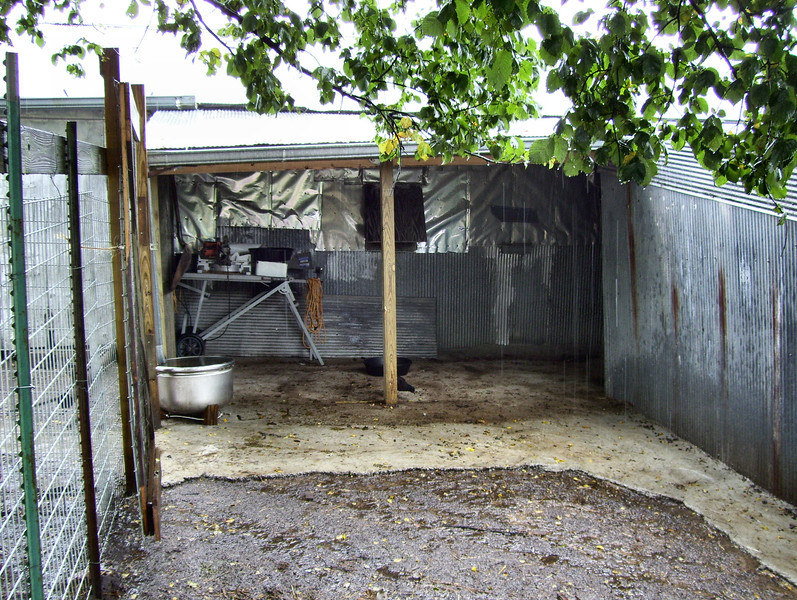 New sheep shed from the South.