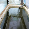 """Water"" in the Solar Tank for the Goats and Other Animals.<br /> Being in the 20's°F last night there wasn't much ice on the water. When it gets down below 0°F as it will in a couple days from now, there will be maybe ½"" of ice which I will break and dip out. If it stays cloudy, as it is today, the ice will build up thicker at the edges. But when the sun comes out, even when it is below 0°F the water will thaw around the edges and allow me to take out the ice by midmorning. When it stays cloudy on a day like today with the temperature in the 20's°F, the water will stay so the animals can drink it."