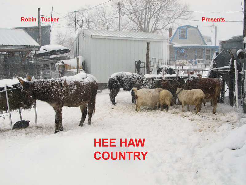 HEE HAW COUNTRY.