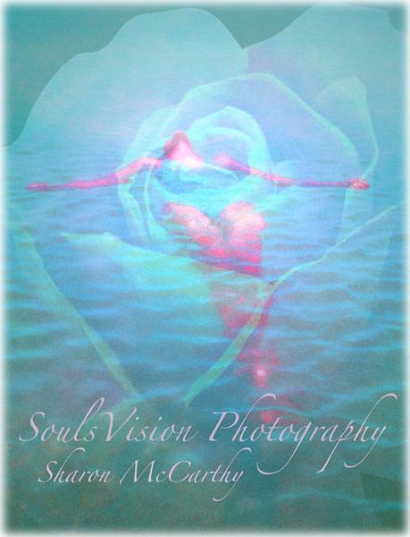 Her Heart Rose