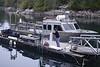 2019-03-30<br /> Captain Dan at Hurst Isle dive boat<br /> God's Pocket Resort