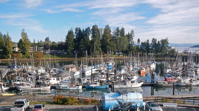 2014-09-21<br /> Port Hardy Marina<br /> Vancouver Island, British Columbia