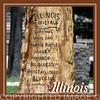 Illinois official bird, tree, etc.