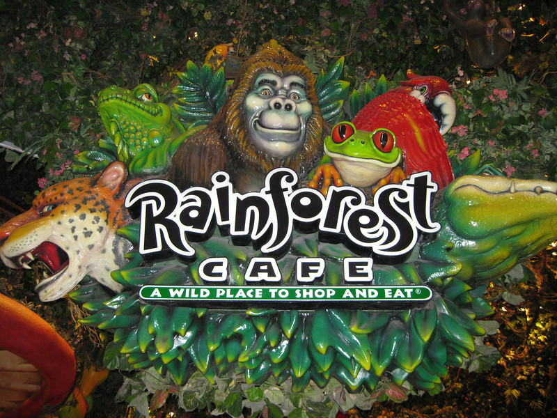 Rainforest Cafe in the MGM.