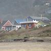 Beach houses.