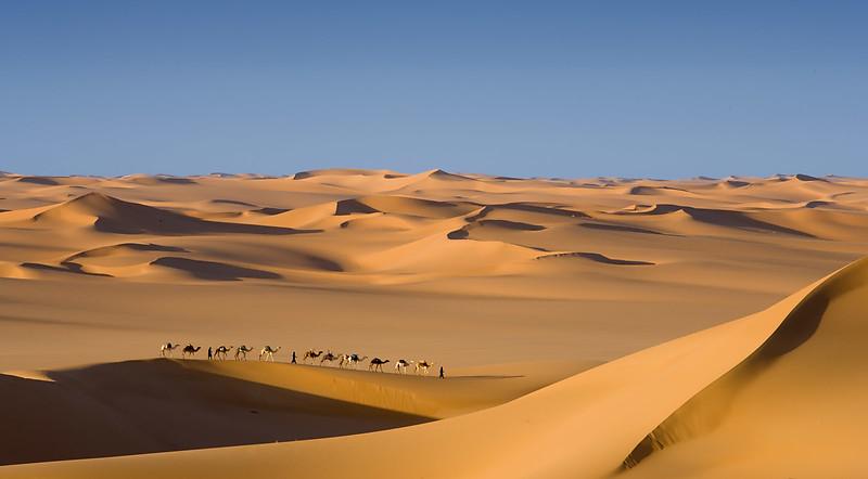 Passing camels. Arakaou. Near the Aïr Mountains.