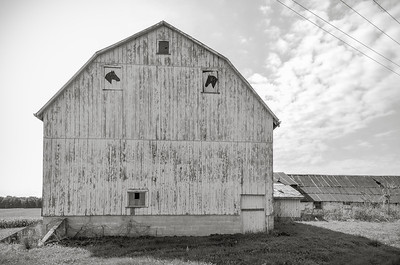 Horse barn in black and white