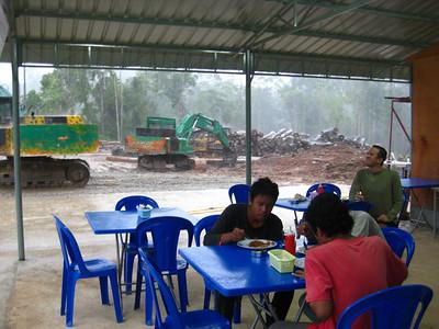 Visiting a logging camp