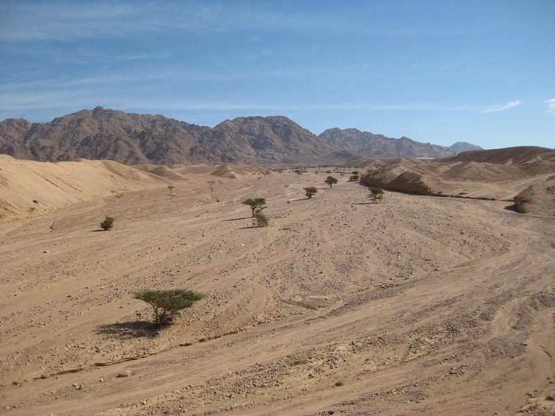 Desert near Aqaba