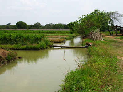 Farm moat and bridge to field