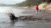 Gold Coast Beaches (Miami) Erosion Feb 24th 2013 (17)