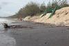 Gold Coast Beaches (Miami) Erosion Feb 24th 2013 (18)