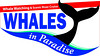 Whales in Paradise Logo